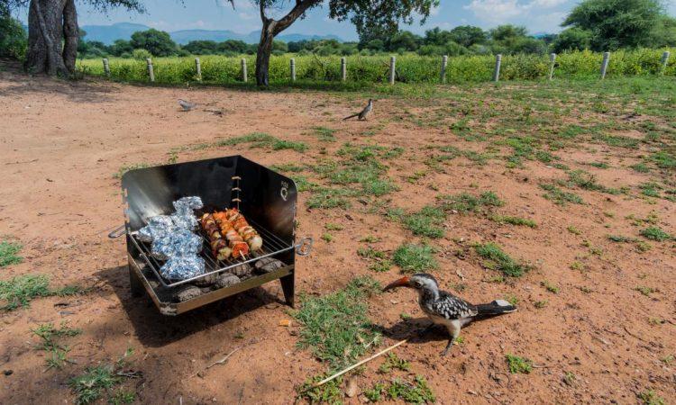 Der FireQ in Südafrika